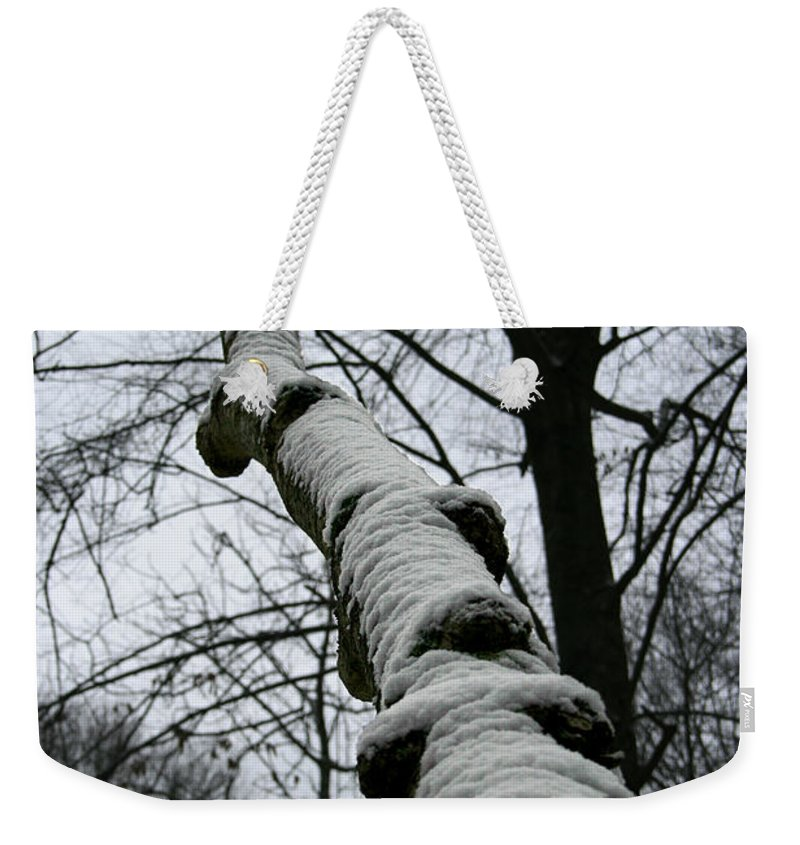 Nature Winter Snow White Cold Quite Peaceful Forest Woods Tree Cover Grey Knot Outdoor Weekender Tote Bag featuring the photograph Knoted by Andrei Shliakhau