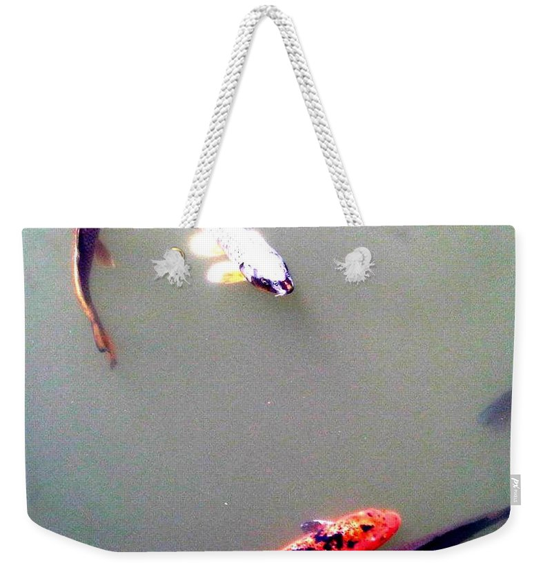 Bonsai Photo Weekender Tote Bag featuring the photograph Koi Pond Brooklyn by Lord Frederick Lyle Morris