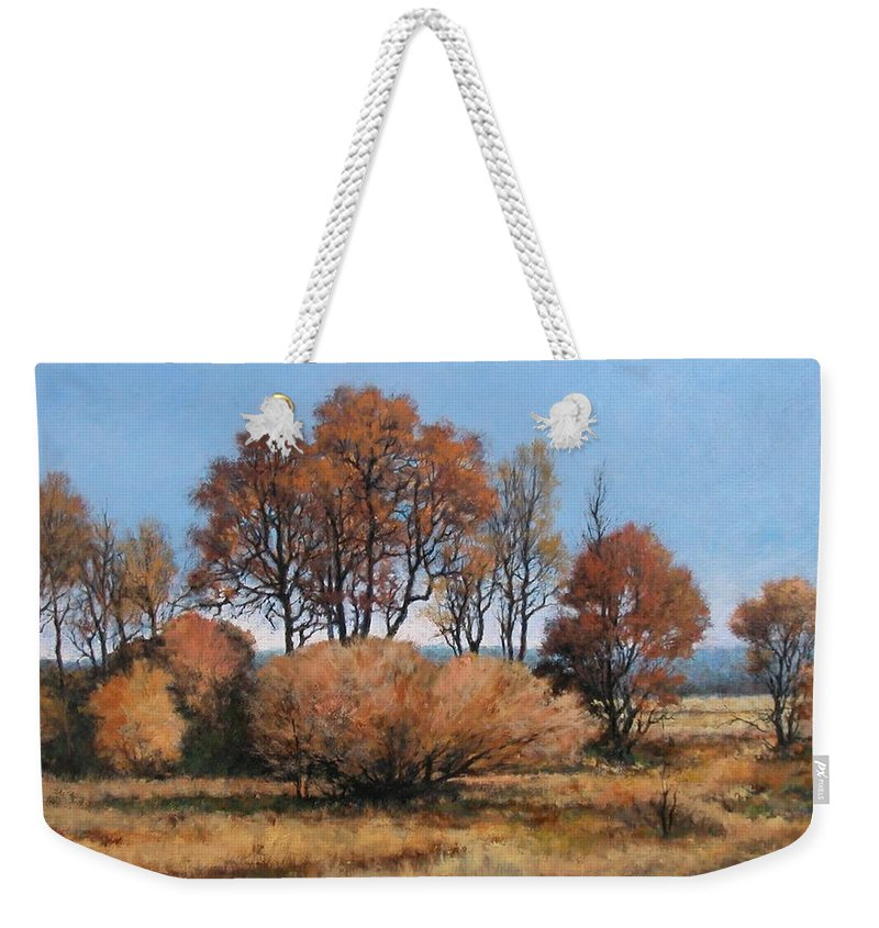 Painting Weekender Tote Bag featuring the painting La Center Bottoms by Jim Gola