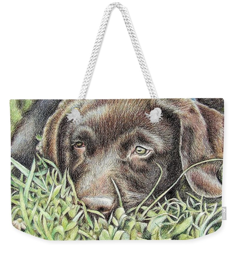 Dog Weekender Tote Bag featuring the pastel Labrador Puppy by Nicole Zeug
