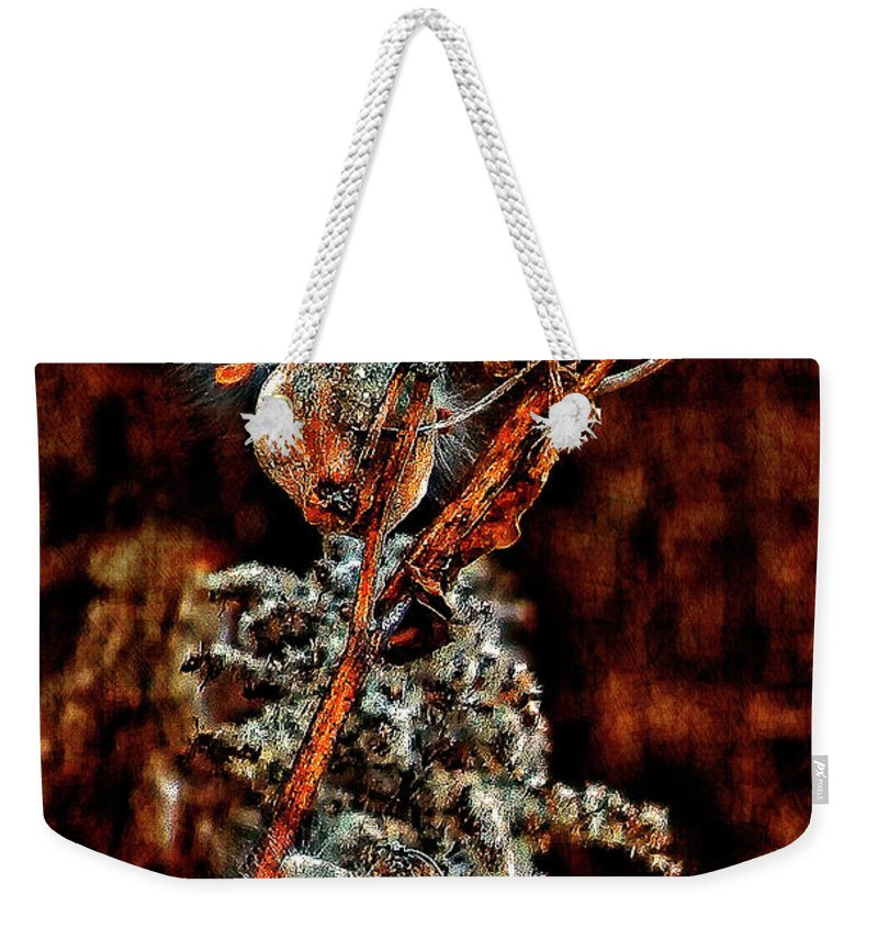 Milkweed Weekender Tote Bag featuring the photograph Lady Of The Dance II by Steve Harrington