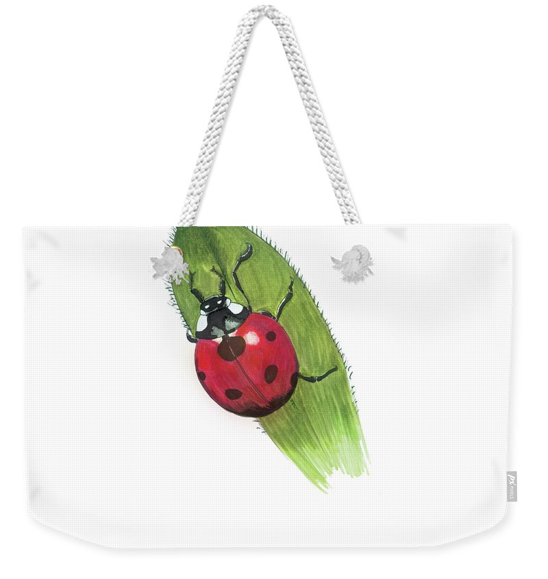 Ladybug Weekender Tote Bag featuring the drawing Ladybug On Leaf by Lee Gelwicks