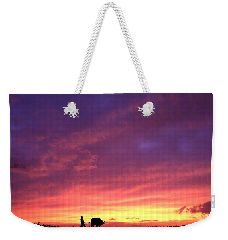 Sunset Weekender Tote Bag featuring the photograph Laguna Sunset by George Cabig