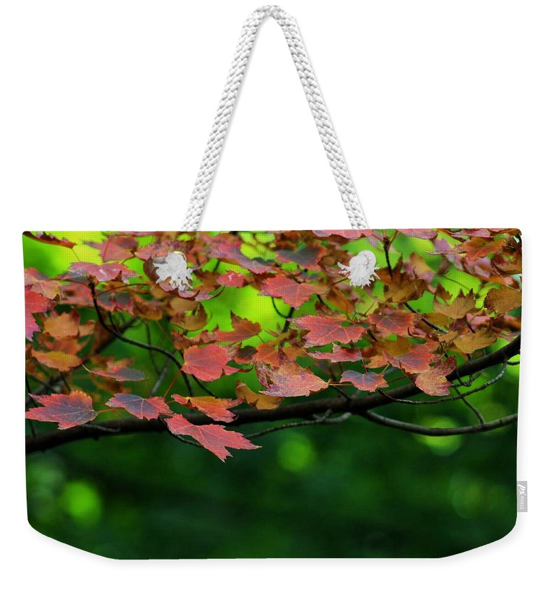 Autumn Weekender Tote Bag featuring the photograph Laid Upon The Branches by LKB Art and Photography