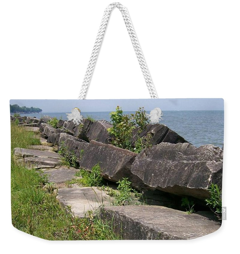 Lake Weekender Tote Bag featuring the photograph Lake Front Park by Sara Raber