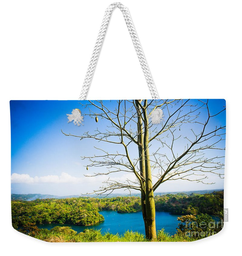 Nature Weekender Tote Bag featuring the photograph Lonely Tree by Anna Serebryanik