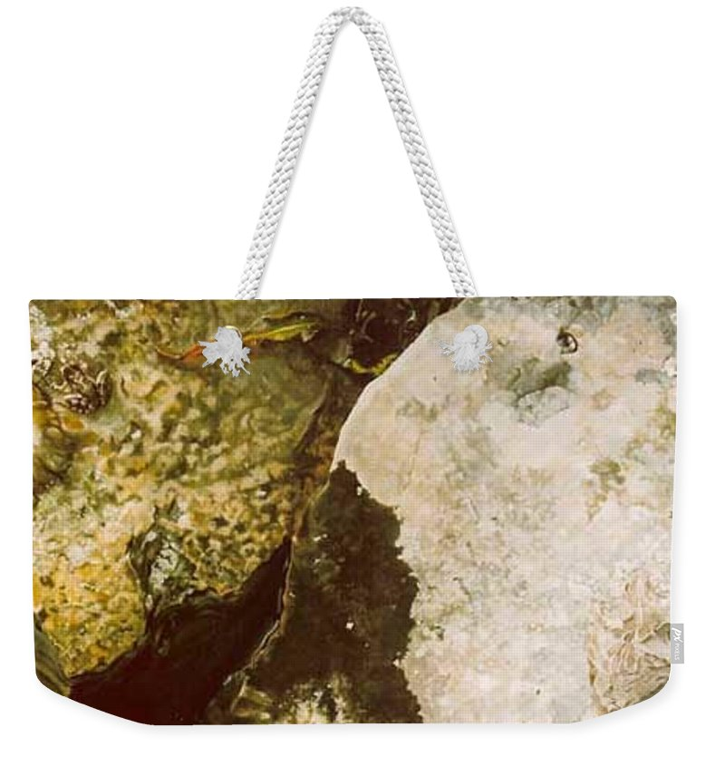 Hyperrealism Weekender Tote Bag featuring the painting Lake Level Dropping by Michael Earney