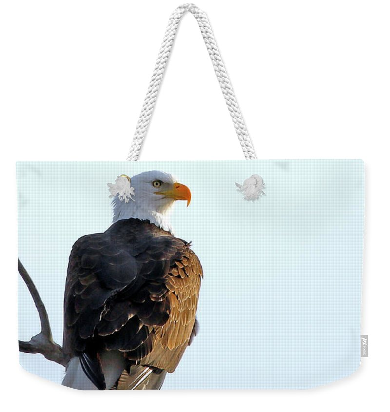 Bald Eagle Weekender Tote Bag featuring the photograph Lake Manawa Layover Closeup by Stephen Schwiesow