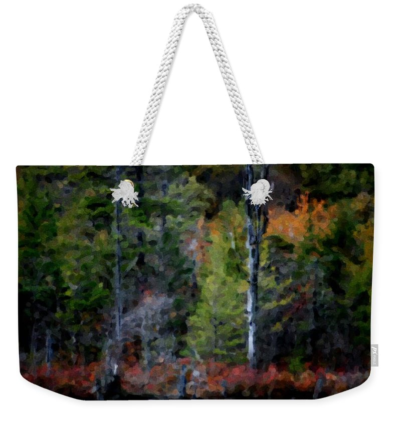 Digital Photograph Weekender Tote Bag featuring the photograph Lakeside In The Autumn by David Lane