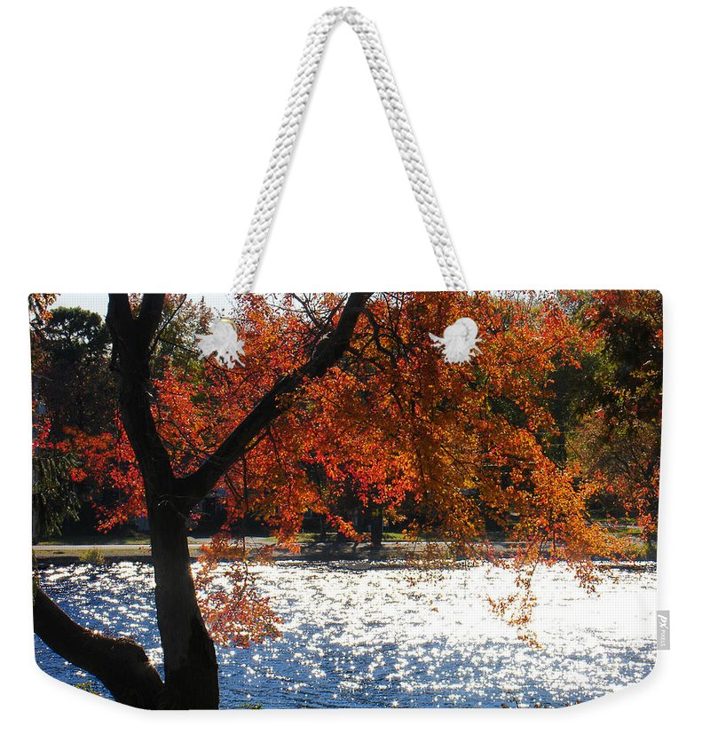 Landscape Weekender Tote Bag featuring the photograph Lakewood by Steve Karol