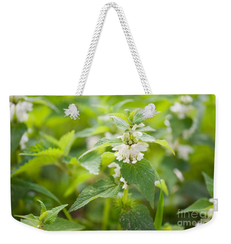 Flowers Weekender Tote Bag featuring the photograph Lamium Album White Flowers Macro by Arletta Cwalina