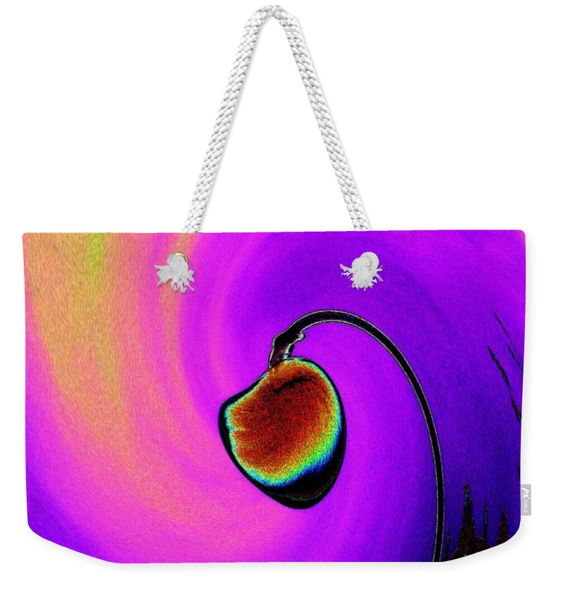 Lamp Weekender Tote Bag featuring the photograph Lamp by Tim Allen