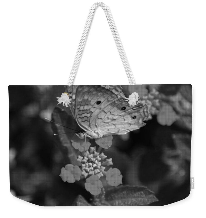 Black And White Weekender Tote Bag featuring the photograph Landed by Rob Hans