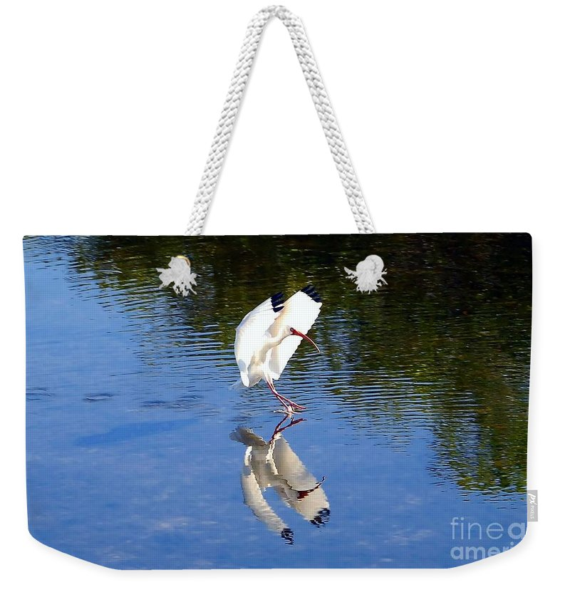 Landing Weekender Tote Bag featuring the photograph Landing by David Lee Thompson