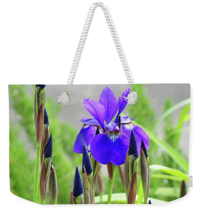 Nature Weekender Tote Bag featuring the photograph Landscape Floral Purple Green Iris Flower Irises Baslee Troutman by Patti Baslee