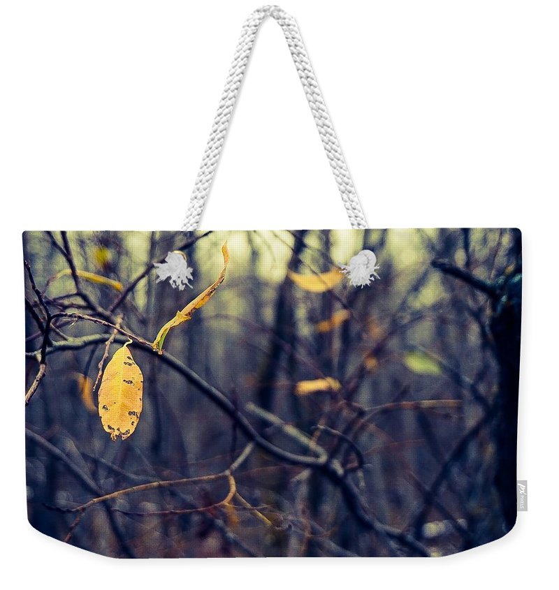 Landscape Photograph Weekender Tote Bag featuring the photograph Last Bit Of Fall by Desmond Raymond