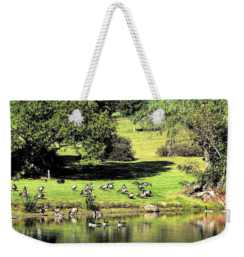 Bird Weekender Tote Bag featuring the photograph Last Days Of Summer by Gaby Swanson
