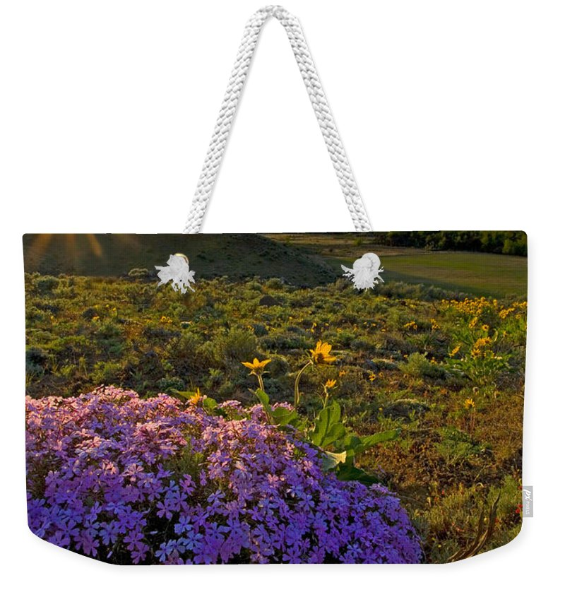 Wildflowers Weekender Tote Bag featuring the photograph Last Light Of Spring by Mike Dawson