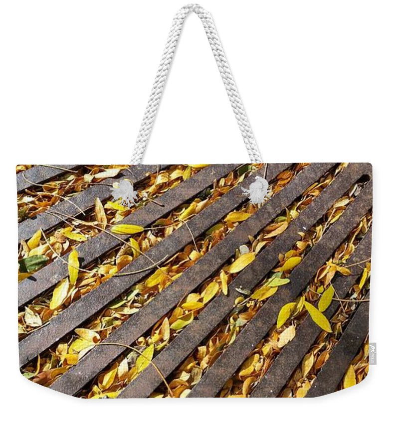 Weekender Tote Bag featuring the photograph Last Rays Of Summer by Zac AlleyWalker Lowing