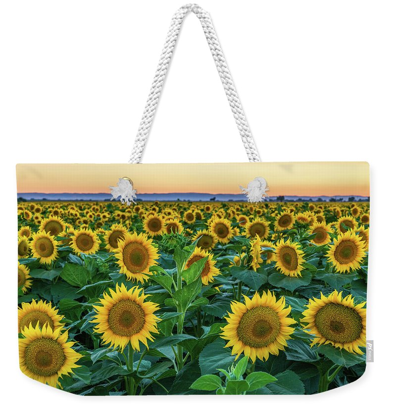 California Weekender Tote Bag featuring the photograph Late Bloomer by Greg Mitchell Photography