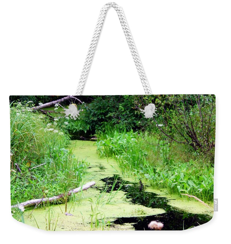 Pine Falls Manitoba Creek Water Weekender Tote Bag featuring the photograph Late Summer At The Creek by Joanne Smoley