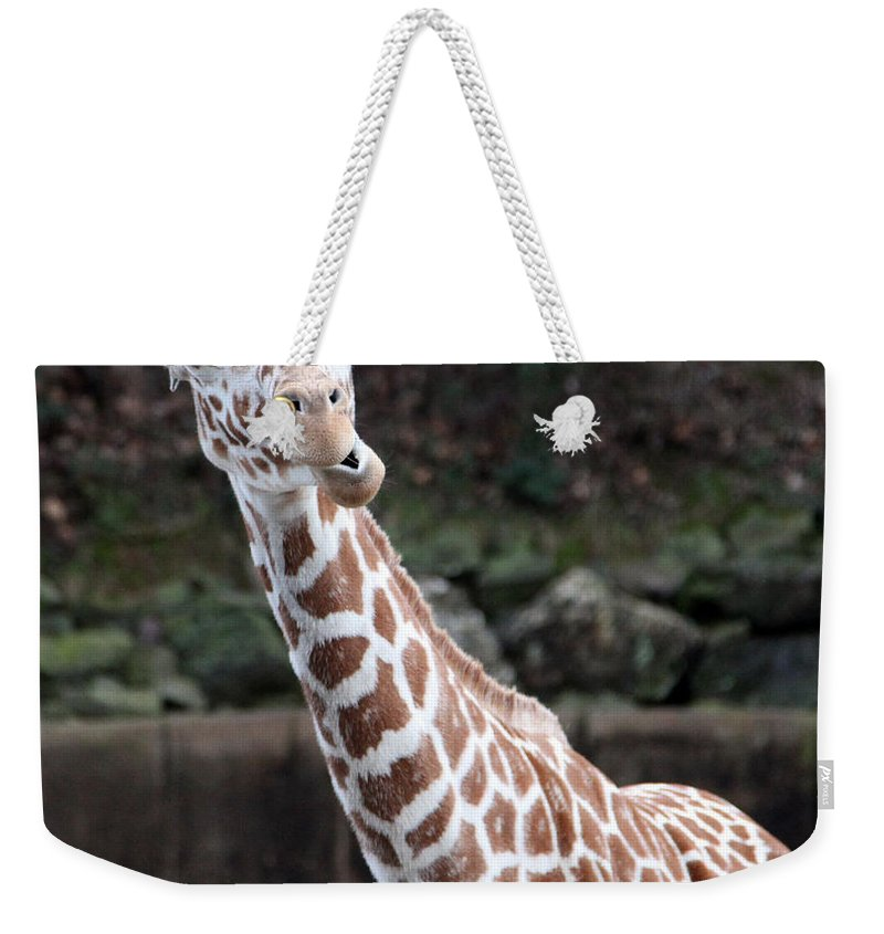 Laughing Giraffe Weekender Tote Bag featuring the photograph Laughter by Amanda Barcon