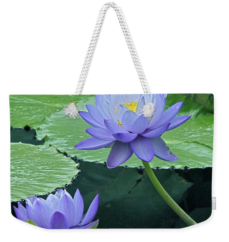 Water Weekender Tote Bag featuring the photograph Lavender Enchantment by Byron Varvarigos