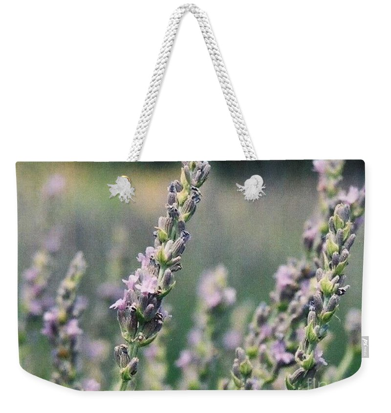 Flowers Weekender Tote Bag featuring the painting Lavender by Eric Schiabor