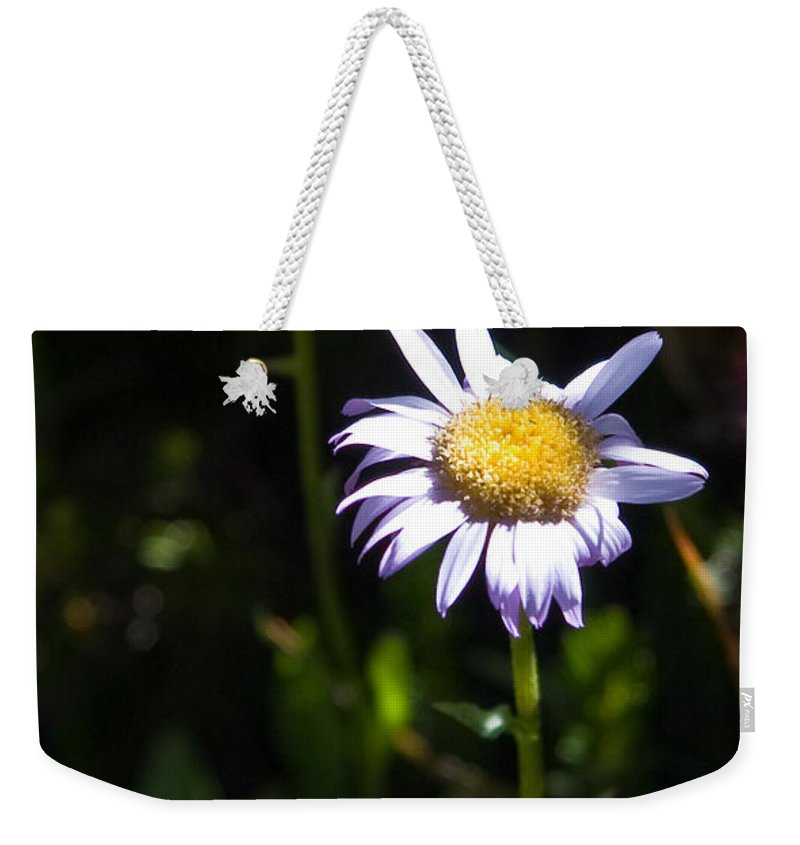 Lavender Wild Flowers Weekender Tote Bag featuring the photograph Lavender Friends by Chris Brannen