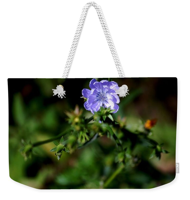 Digital Photograph Weekender Tote Bag featuring the photograph Lavender Hue by David Lane