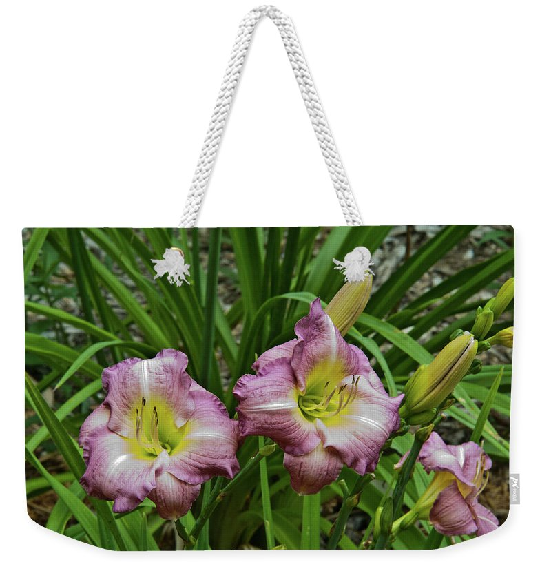 Lavender Weekender Tote Bag featuring the photograph Lavender Lily Triad by Douglas Barnett