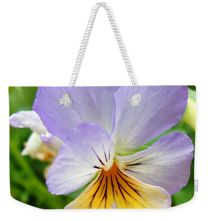 Pansy Weekender Tote Bag featuring the photograph Lavender Pansy by Nancy Mueller