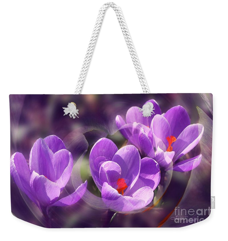 Lavender Weekender Tote Bag featuring the photograph Lavender Spring by Jutta Maria Pusl