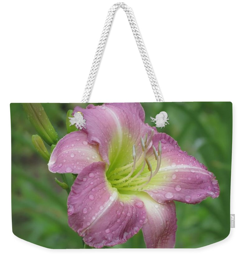 Lavender Vista Daylily Weekender Tote Bag featuring the photograph Lavender Vista - Daylily by MTBobbins Photography