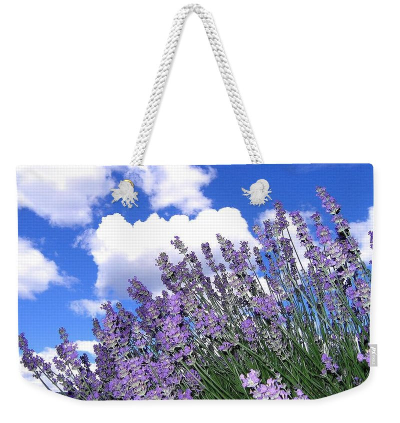 Lavender Weekender Tote Bag featuring the photograph Lavender by Will Borden