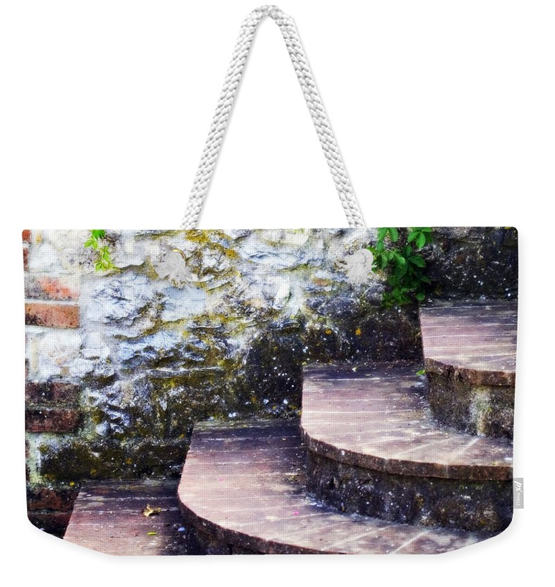 Lead Weekender Tote Bag featuring the photograph Lead The Way by Marilyn Hunt