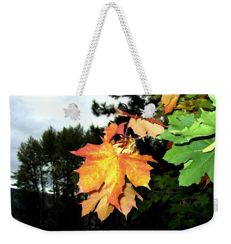 Leading The Way Into Fall Weekender Tote Bag featuring the digital art Leading The Way Into Fall by Will Borden