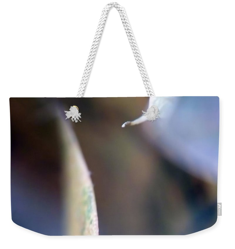 Abstract Weekender Tote Bag featuring the photograph Leaf Abstract IIi by Lauren Radke