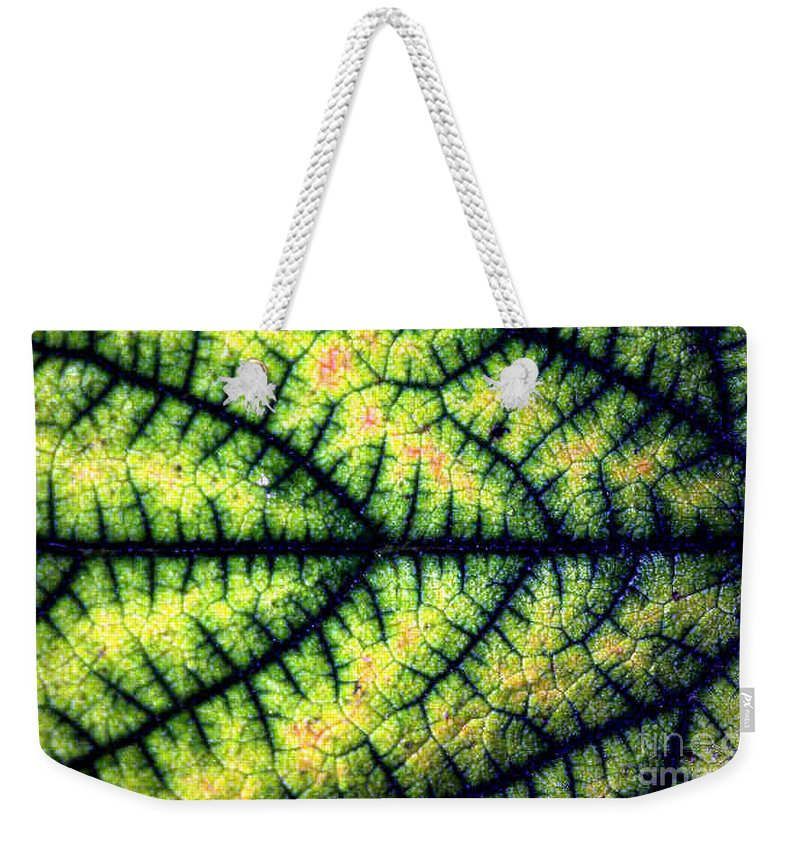 Leaf Weekender Tote Bag featuring the photograph Leaf by Dragica Micki Fortuna