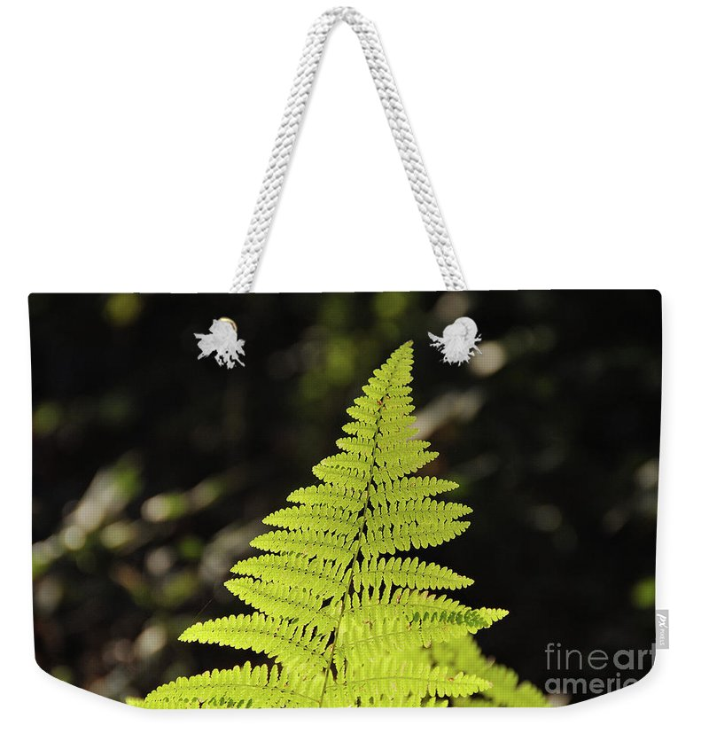 Leaf Weekender Tote Bag featuring the photograph Leaf by Ilaria Andreucci