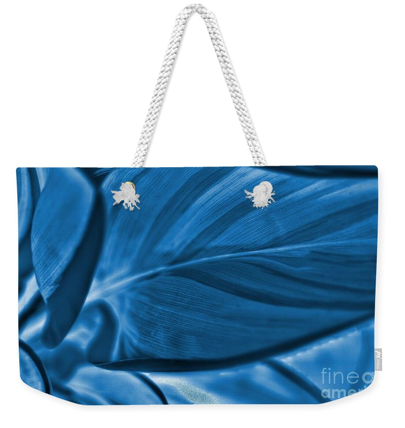 Leaf Weekender Tote Bag featuring the photograph Leaf Of Plant by Kathleen Struckle