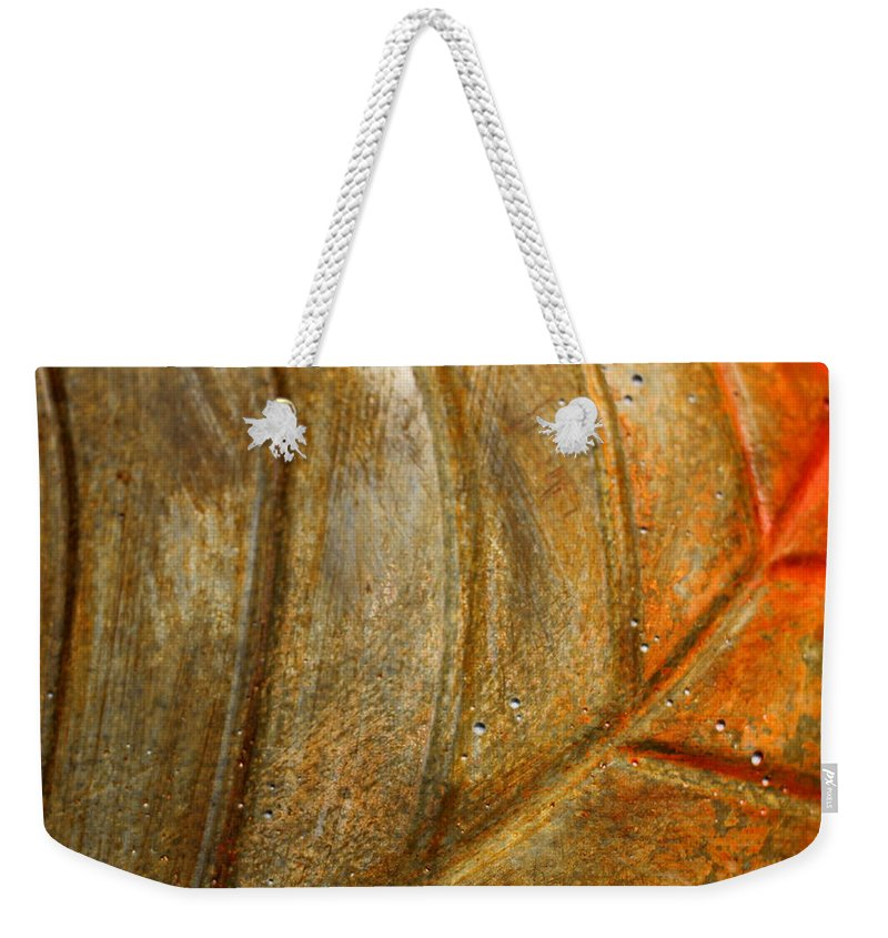 Leaf Weekender Tote Bag featuring the photograph Leaf Structur by Heike Hultsch