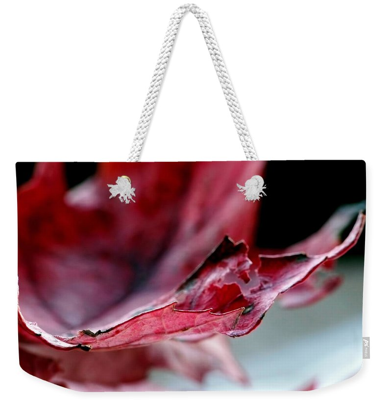 Abstract Weekender Tote Bag featuring the photograph Leaf Study II by Lauren Radke