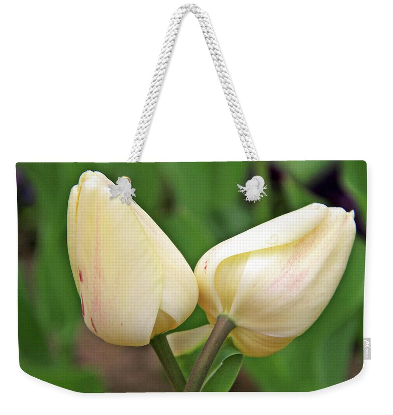 Flowers Weekender Tote Bag featuring the photograph Lean On Me by Scott Mahon