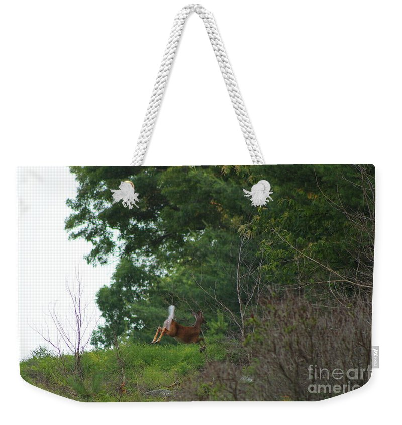 Deer Weekender Tote Bag featuring the photograph Leaping White-tail by Neal Eslinger
