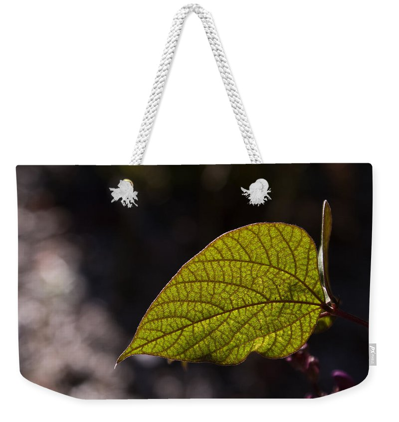 Leaf Weekender Tote Bag featuring the photograph Leav Venation by Douglas Barnett