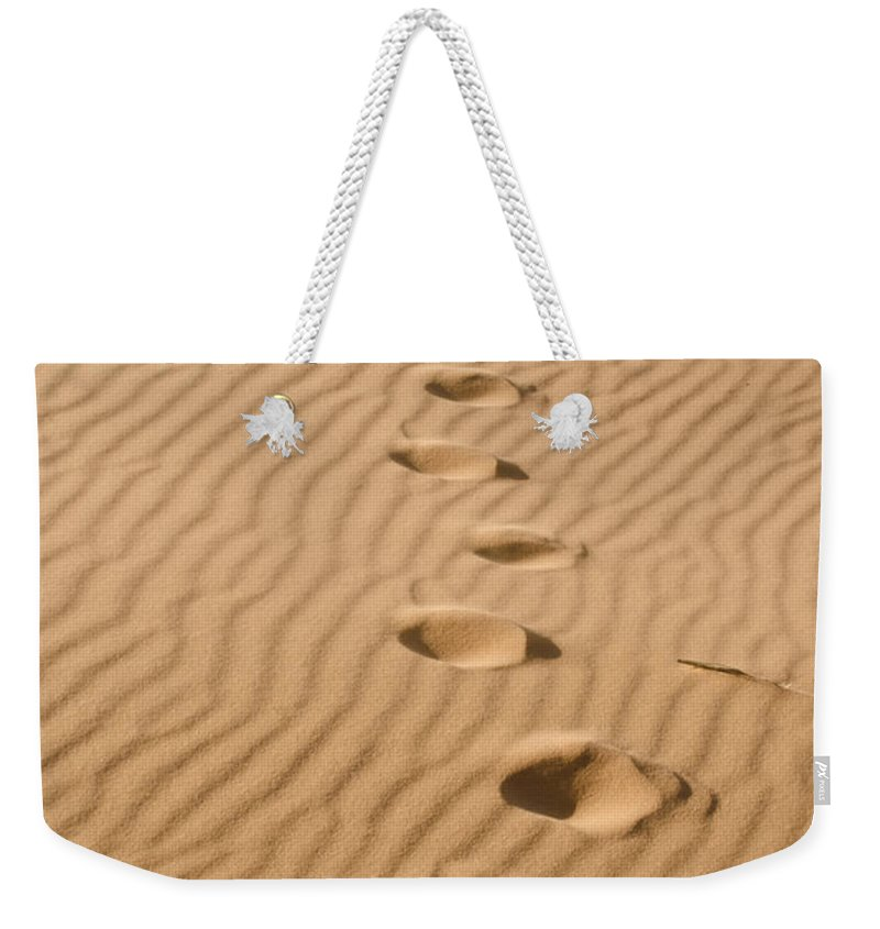 Coral Pink Sand Dunes Weekender Tote Bag featuring the photograph Leave Only Footprints by Heather Applegate