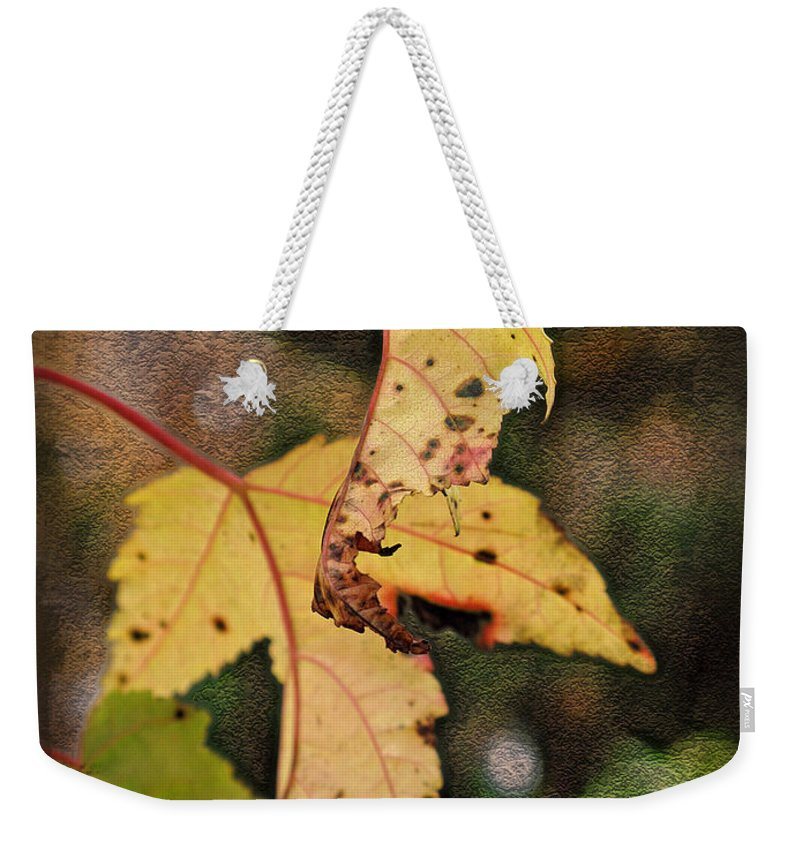 Autumn Weekender Tote Bag featuring the photograph Leaves And Autumn by Joan Minchak