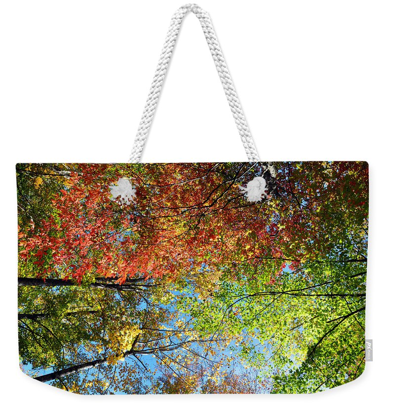 Leaves Weekender Tote Bag featuring the photograph Leaves Of All Colors by Brittany Horton