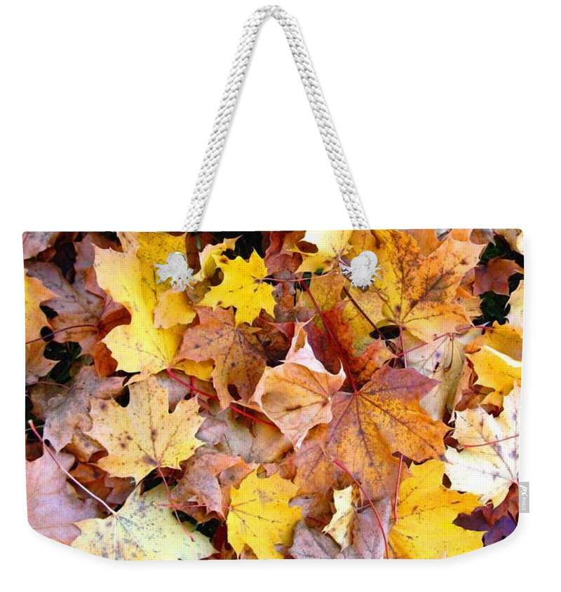 Leaves Weekender Tote Bag featuring the photograph Leaves Of Fall by Rhonda Barrett